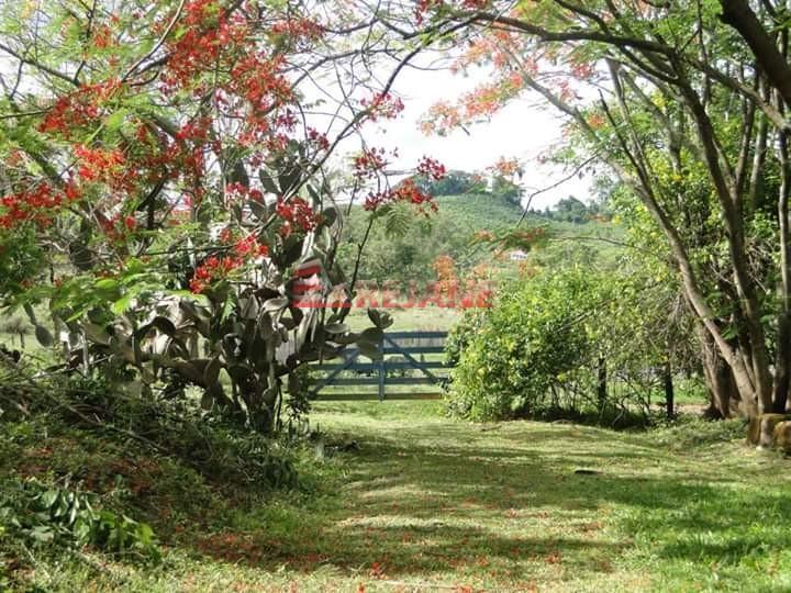 Foto: Sítio - Zona Rural - Monte Santo de Minas