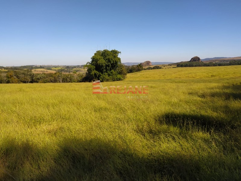 Foto: Fazenda - Zona Rural - São Sebastião do Paraíso/MG