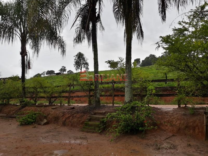 Foto: Sítio - Zona Rural - São Sebastião do Paraíso/MG